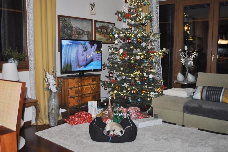 Lara JB štěně vánoce