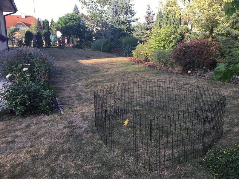 Ohrádka pro psa